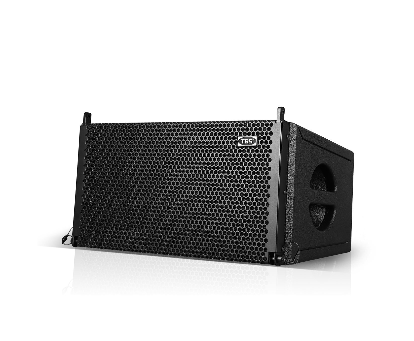 G-10  single 10-inch linear array speaker